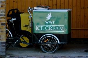 WWT Ice cream